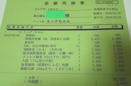 リンパ腫を発見した際の費用。診療明細書。