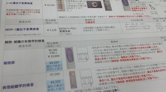 遺伝子検査(クローナリティ検査)の説明書