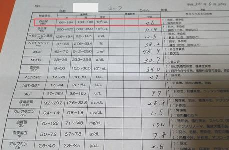 ミックの血液検査の結果 検査項目表